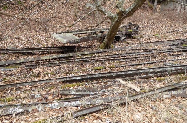 tracks1